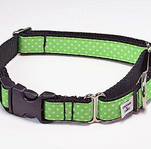 Key Lime Chocolate Buckle Martingale Dog Collar