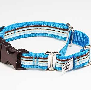 Retro Blue Ice Buckle Martingale Dog Collar
