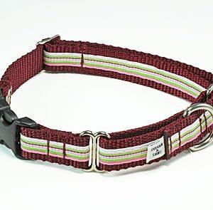 Retro Cherry Twist Buckle Martingale Dog Collar