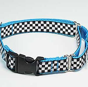 Speedway GT Turquoise Buckle Martingale Collar