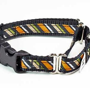 Wall Street Stripe Buckle Martingale Collar