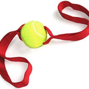 2 Handled Tennis Ball Tug