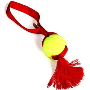 Tennis Ball Tug with Tassel