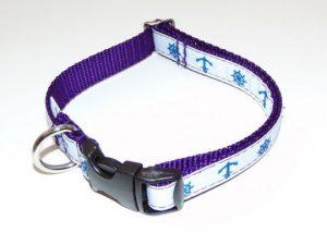 NAU4 Collar Web_540x405