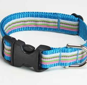 Turquoise Riviera Dog Collar