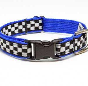 Speedway Monterey Blue Cat Collar