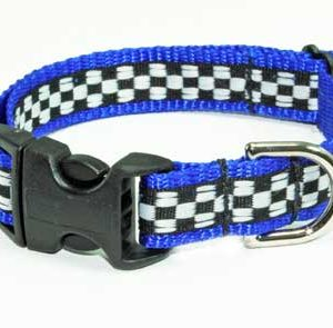 Speedway Monterey Blue Dog Collar