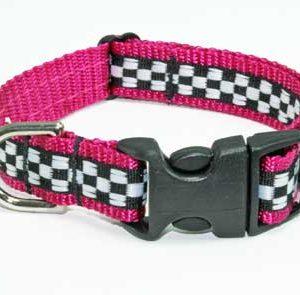 Speedway Pink Sports Car Collar