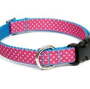 Seaside Polka Dot Pink Dog Collar