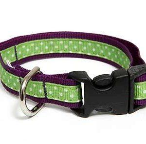 Sandcastle Polka Dot Dog Collar