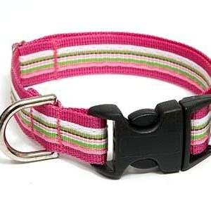 Retro Pink Peppermint Dog Collar