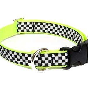 Taxi Cat Collar