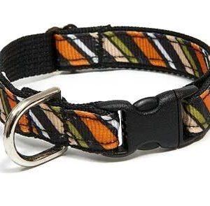 Wall Street Stripe Dog Collar