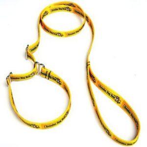 Genuine Dog Gear Logo Humane Slip Leash